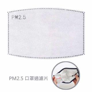 Lucy - 露琪 PM2.5 口罩過濾片(10片裝)