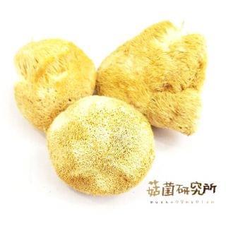 菇菌研究所 - 原色猴頭菇 (150g)
